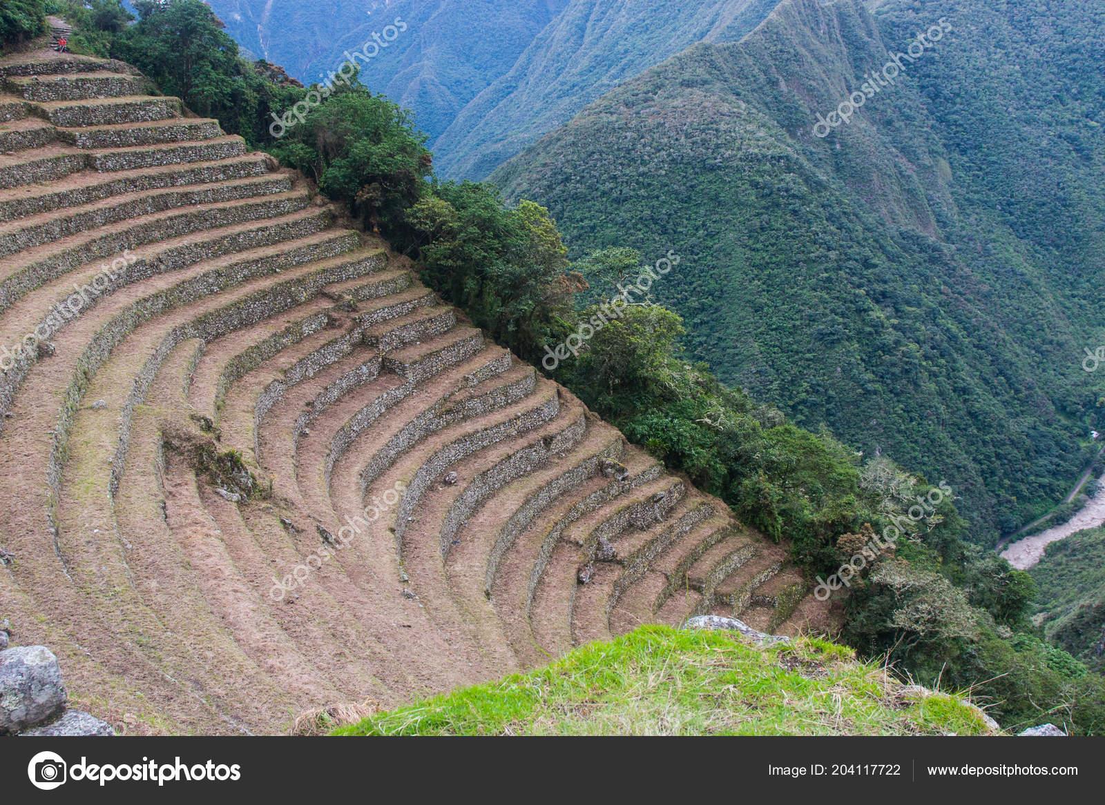 Antigua Inca De Piedra Terrazas De Cultivo Camino Inca