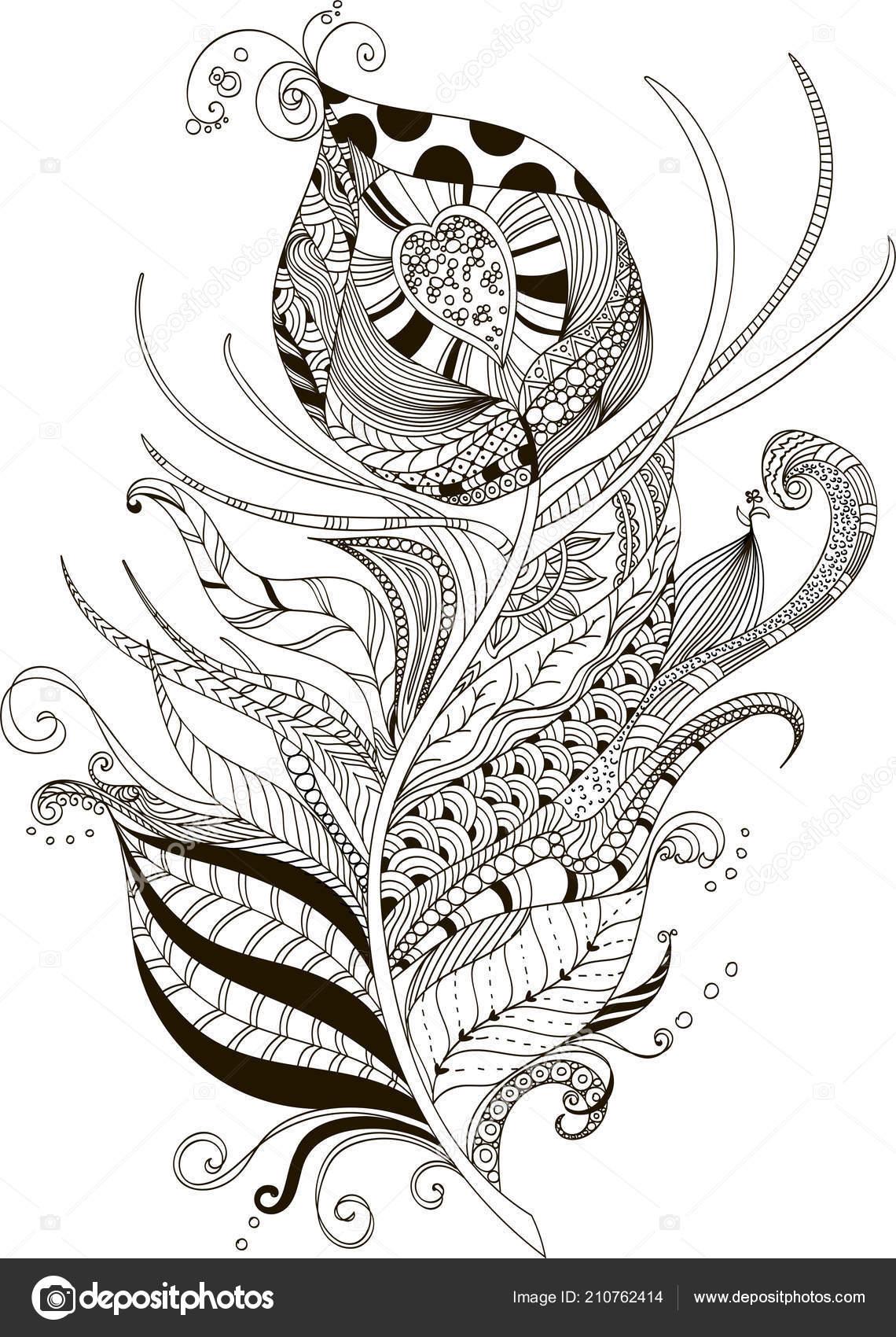 Dibujo Estilo Zentangle Pluma Pavo Real Para Colorear Libro Tatuaje