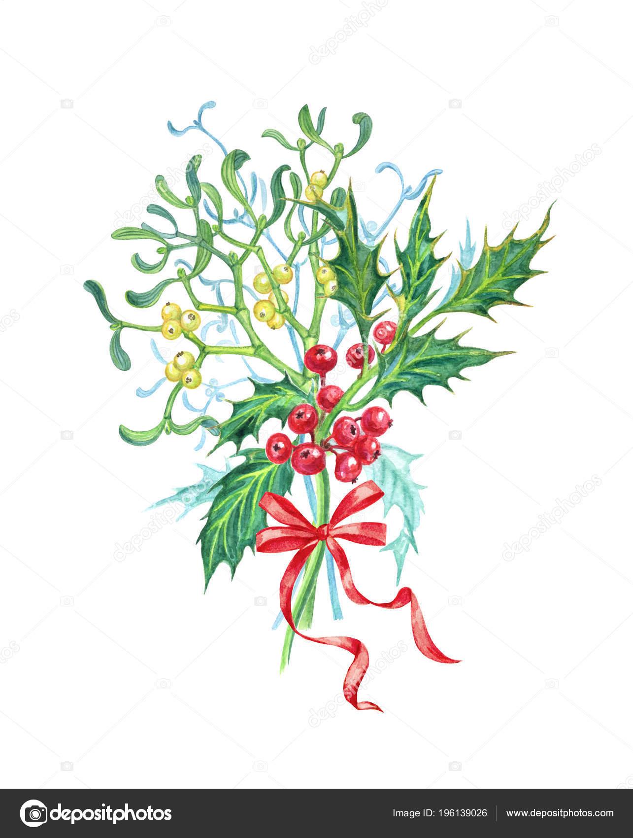 Bouquet Gui Houx Avec Archet Bouquet Noel Aquarelle Dessin Sur