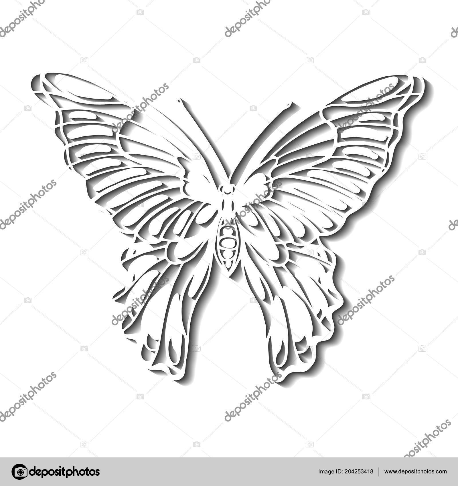 Motyl Kontury Kresby Trojrozmerny Silueta Stock Vektor C Po Lelya