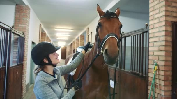 Žena hladí krásné koně ve stáji