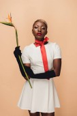beautiful african american girl in black gloves posing with Strelitzia flower isolated on beige