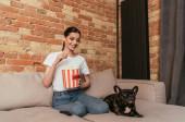 boldog nő kezében popcorn vödör és nézi aranyos francia bulldog kanapén