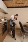 fröhliche junge Frau hält aufgeschnittene Avocado in der Nähe der niedlichen französischen Bulldogge in der Küche