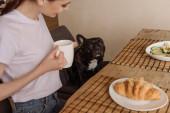 selektiver Fokus des glücklichen Mädchens mit Pokal und Blick auf französische Bulldogge
