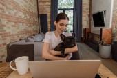 szelektív fókusz vonzó szabadúszó gazdaság karok francia bulldog közel laptop és csésze