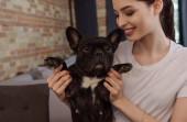 vidám lány gazdaság aranyos és fekete francia bulldog