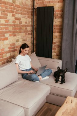 Happy freelancer using laptop near french bulldog in living room stock vector