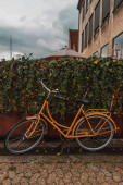 Orange bicycle near bushes on urban street with cloudy sky at background