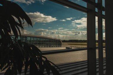 Selective focus of plant near glass of window in airport in Copenhagen, Denmark stock vector