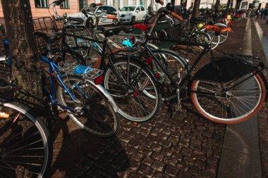 Row of bicycles near trees on urban street in Copenhagen, Denmark stock vector