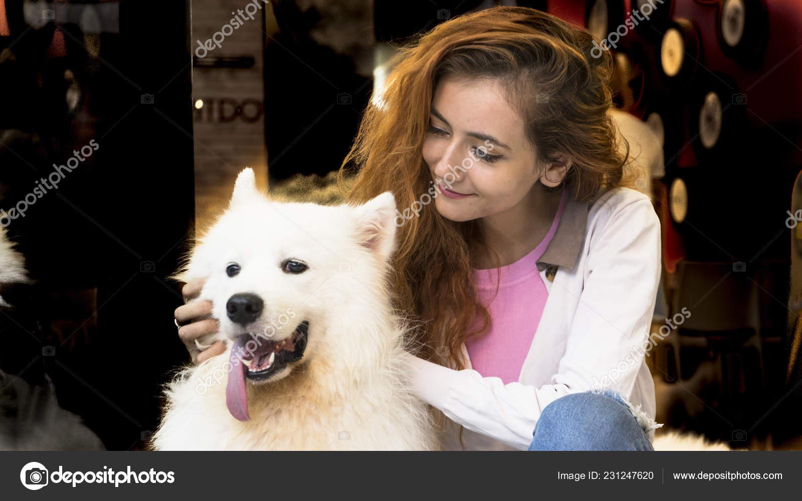 большой пушистый пес