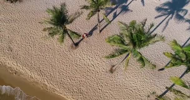Drone shot aerial view of young women swinging at tropical sandy beach with funny emotions, in slow motion . Shot in the Vietnam, 4K resolution video. People travel vacations concept