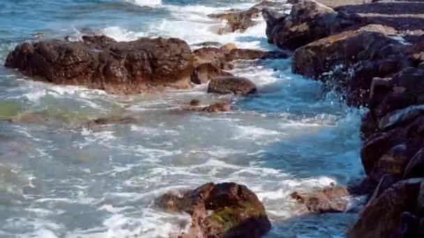 Wild rocky beach with ocean waves