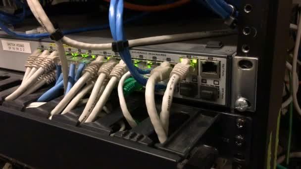 Netzwerk-Server-Kabel eingesteckt Blaulicht Übertragung von Daten