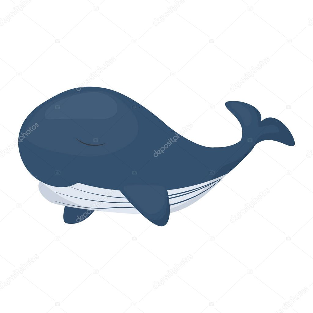 Humpback whale character isolated white background. Sea marine mammal ocean nature water animal vector illustration. Endangered species wildlife.