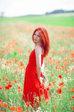 beautiful woman in red dress standing in a poppy field holding flowers, can be used as background