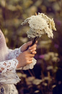 Women hands holding flowers in a rural field outdoors, lust for life, summerly, autumn mood, boho style