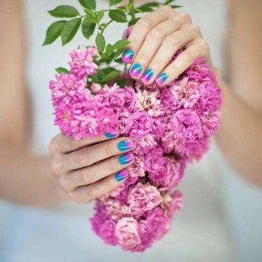 Beautiful woman hands with perfect violet pink and turquoise nail polish holding pink roses, can be used as background