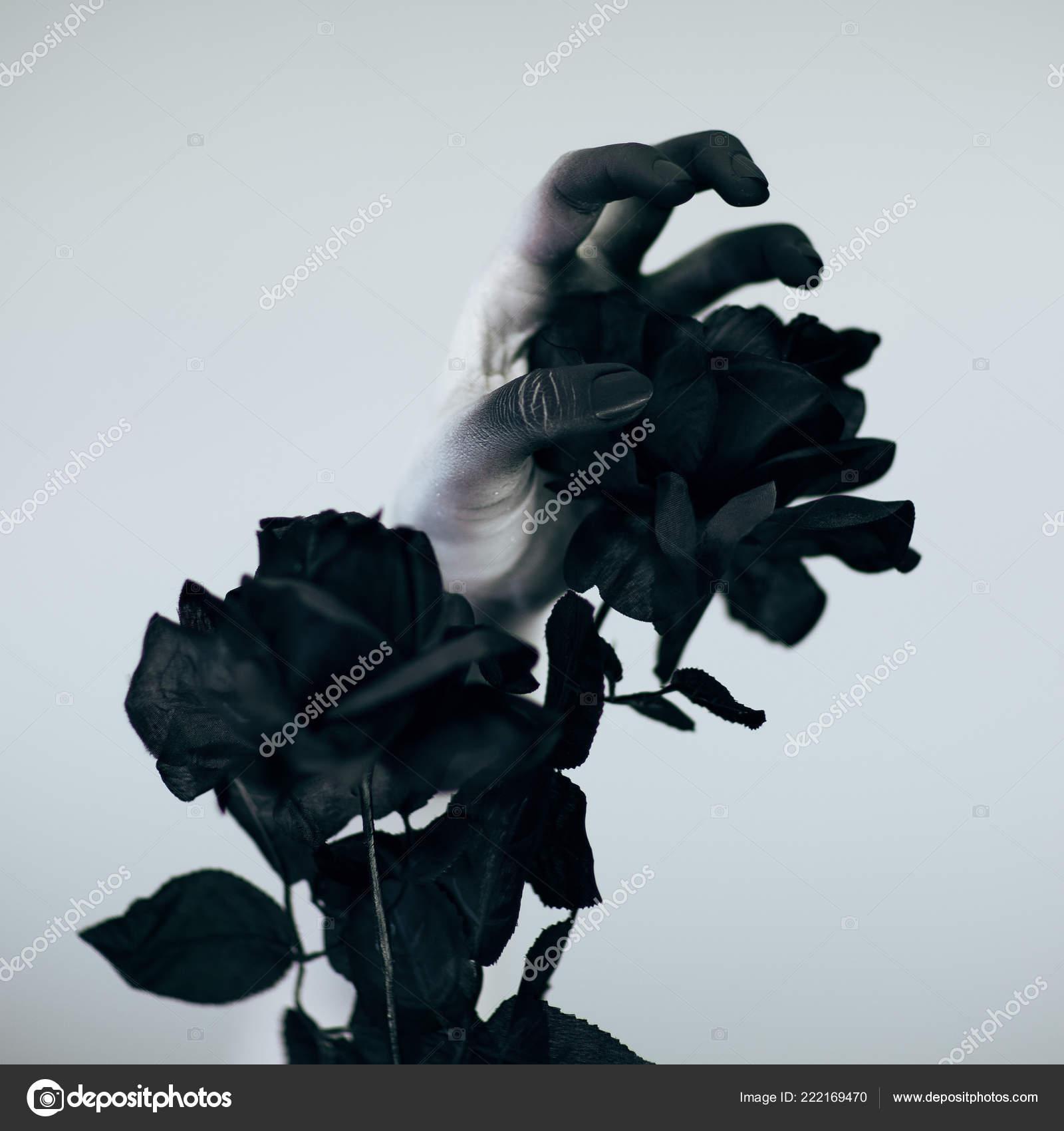 Halloween effrayant main monstre femme avec blanc et noir composent  maintenant rose noire en face de fond blanc — Image de piolka b66bd1bd9e4a