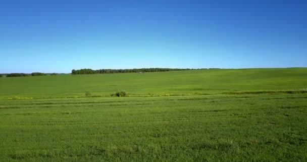 Přelet nad obrovské zelené louce pod jasnou modrou oblohou