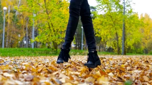 štíhlá dívka v černé džíny hrají s suché žluté listy