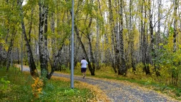 fat man in shorts goes jogging along yellow birch park track