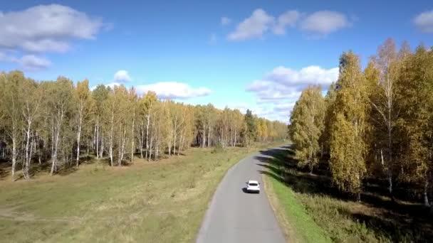 DRONY následuje auto na silnici klikatící se v Březové dřevo