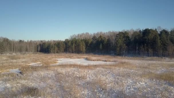 bird eye view forest glade covered with snow and footprints