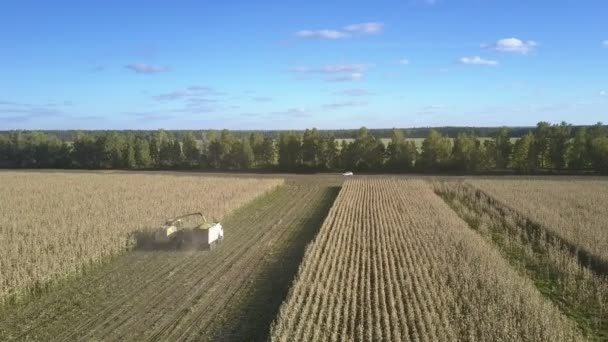 kombinovat způsobuje rozdrcení základu kukuřice na poli