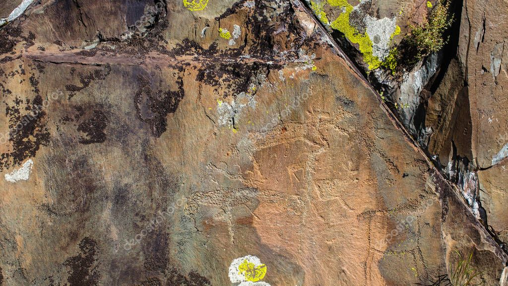 Petroglyphs ancient rock paintings in the Altai Mountains, Russia.