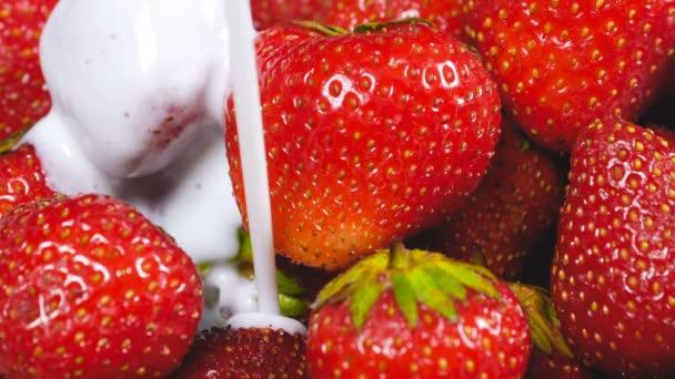 Jogurt na čerstvé jahody. Koncept zdravé snídaně. 4k