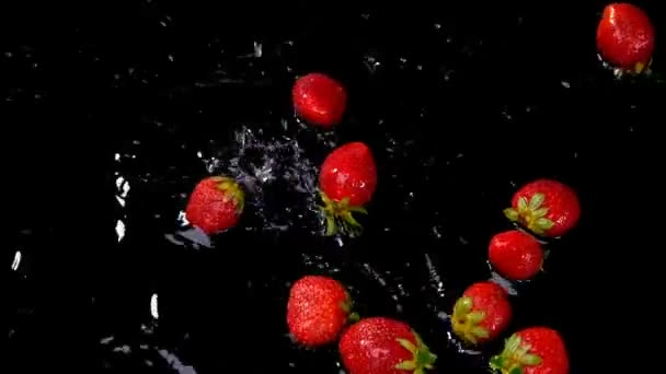 Fresh strawberries falling on water on black background. Healthy eating concept. Fresh fruits background. Slow motion footage.