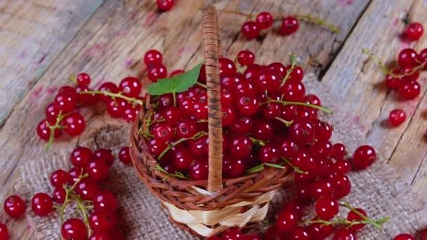 Redriant a kosárba a barna fa asztalra. Friss gyümölcsök piros ribizli forgatható az asztalra. Vitaminok, antioxidánsok és az egészséges táplálkozás koncepcióját. 4k