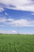 Alternativní energetické zdroje generátory - větrné turbíny uprostřed přírody