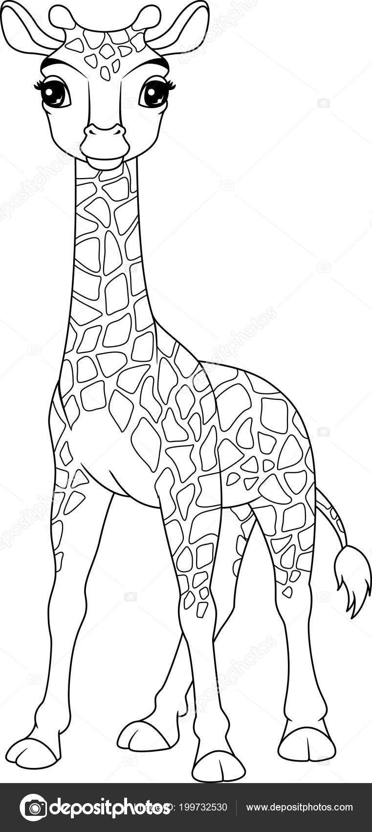 Image Cartoon Giraffe Coloring Page Stock Vector C Malyaka 199732530