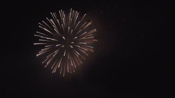 Fireworks Display Night