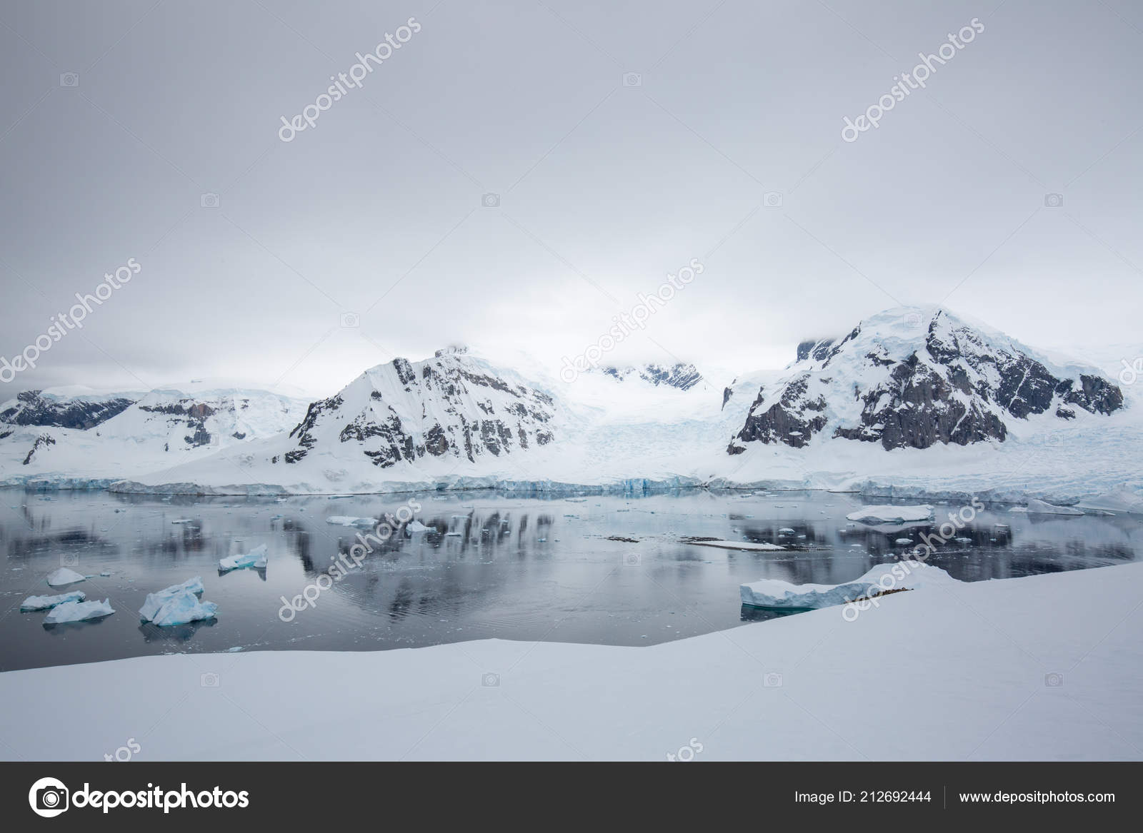 455162bd76 Icecaps Antarctica Iceberg Ocean Swimming Melting Sea — Stock Photo ...