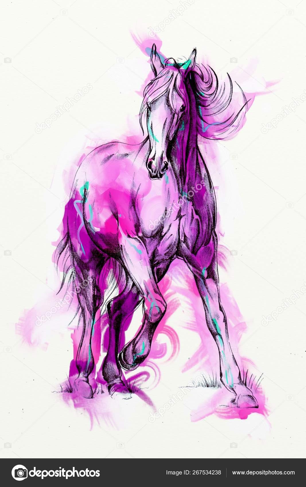 Original Oil Painting Fine Arabian Horse Stock Photo C Maxtor7777 267534238