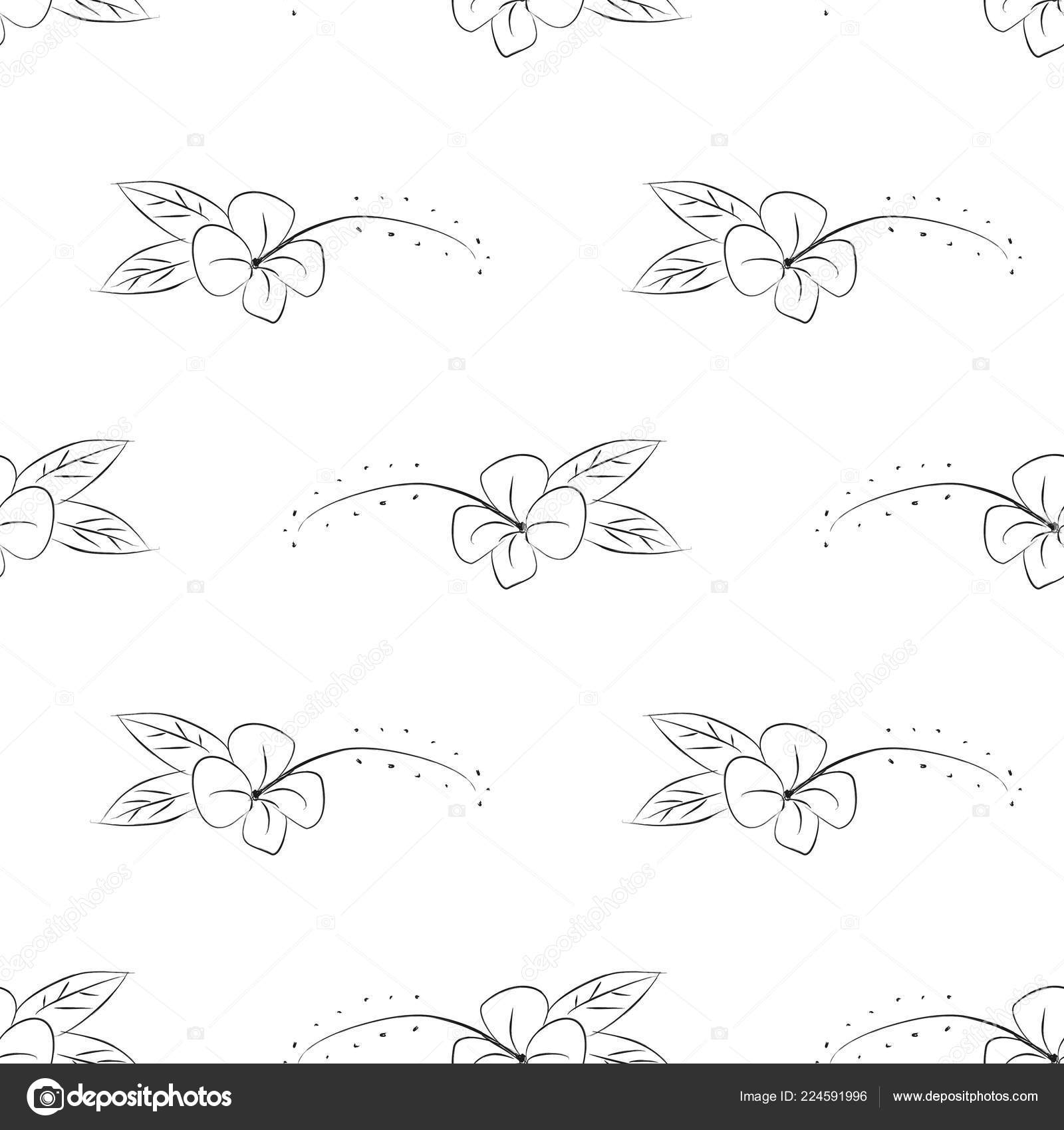 Scandinavian Floral Seamless Pattern Isolated White Background