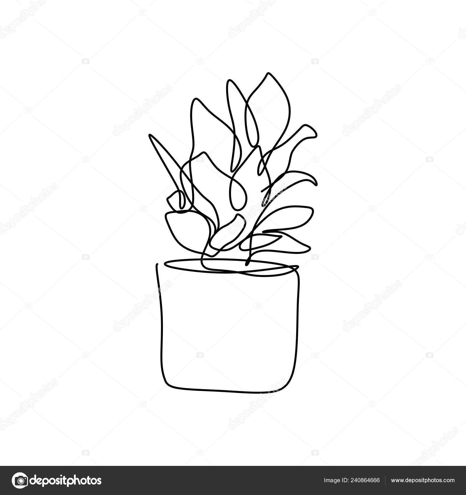 Plant Pot Drawing Plant Pot One Line Drawing Vector Illustration Continuous Stroke Minimalist Stock Vector C Ngupakarti 240864666