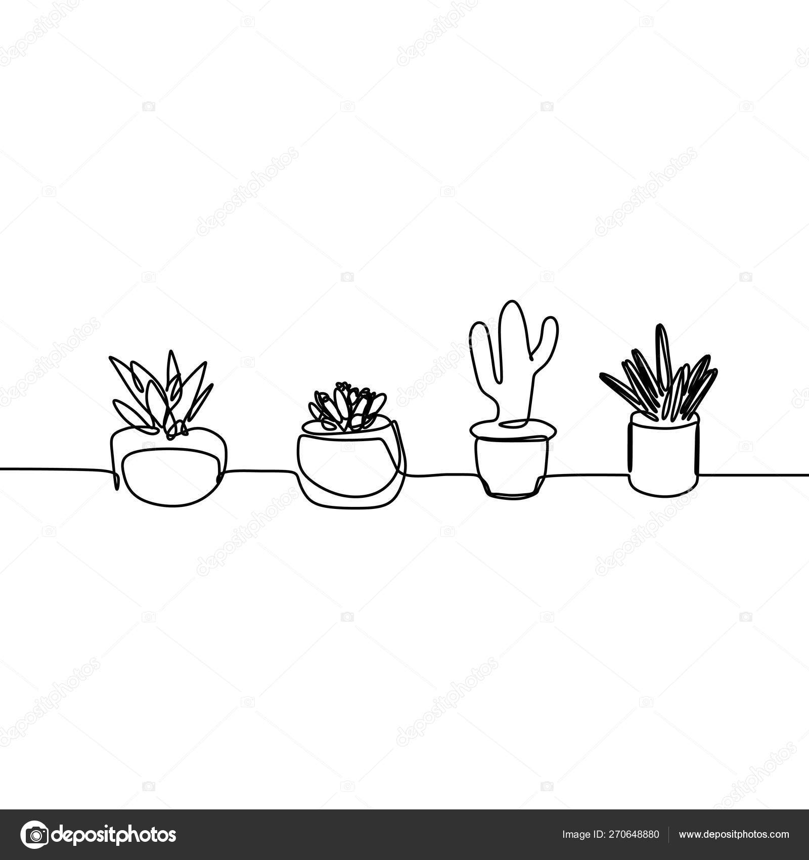 Succulent Line Drawing One Line Drawing Of Cactus And Succulent Continuous Minimalism Design Stock Vector C Ngupakarti 270648880