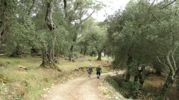 Liapades, Corfu / Griechenland 23. Mai 2018: Menschen wandern durch Olivenhaine Plantage in Bergen von Liapades am Paradise Beach. (Korfu, Griechenland)