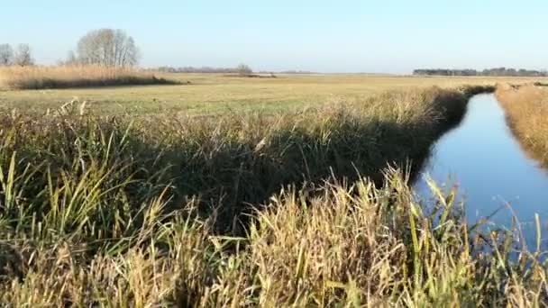 Havel řeka během podzimní čas. Krajina Havelland v Německu. Vrba a reed na břehu