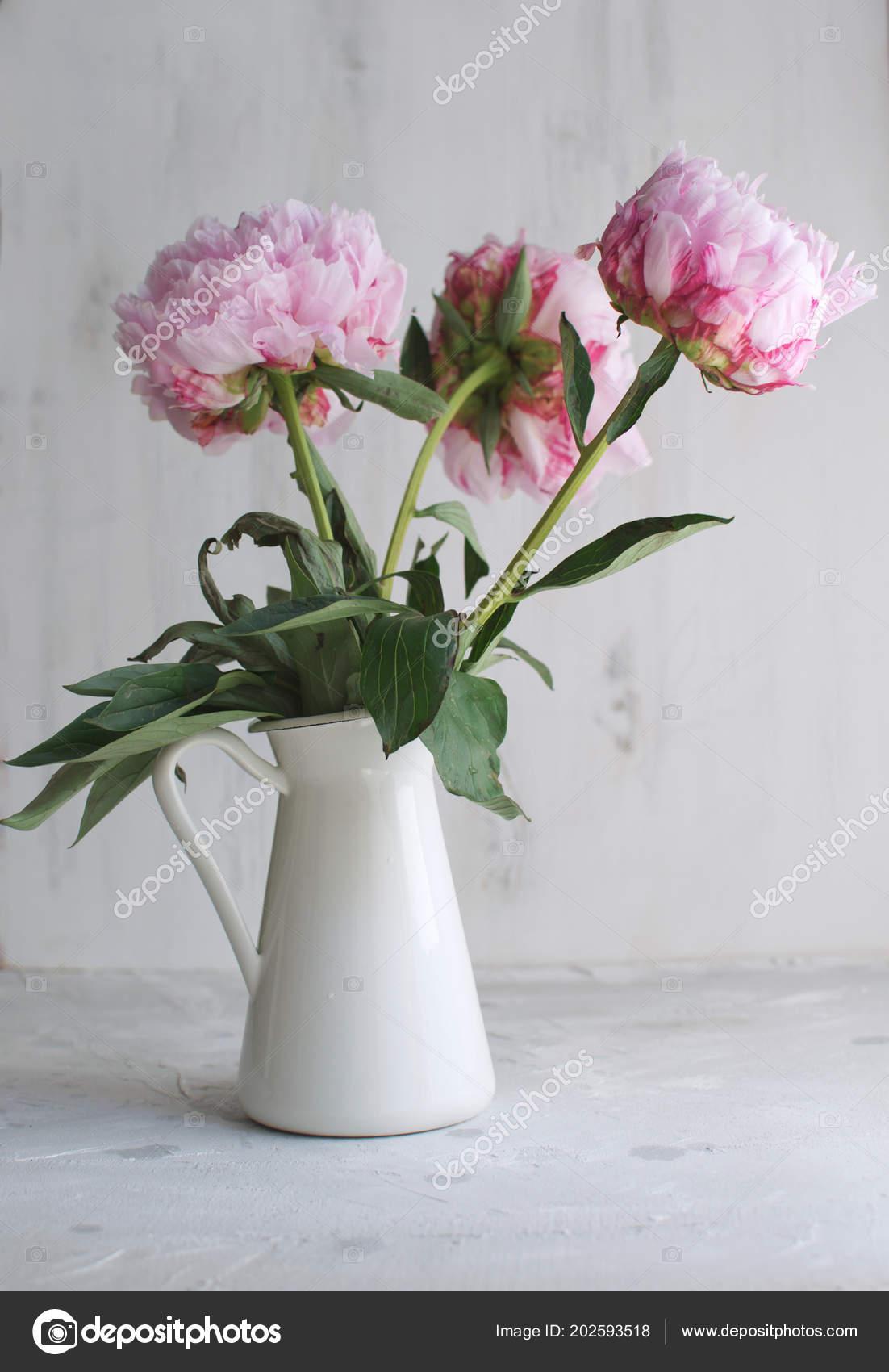 Peonies Flowers White White Vase Background Wedding Stock Photo