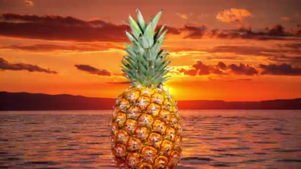 Spinning pineapple with sea coast at sunset on background