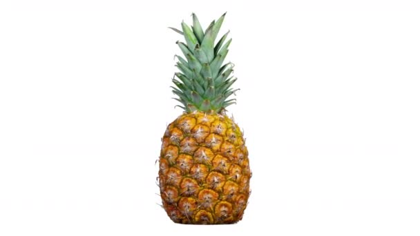 Close up of spinning pineapple on white background