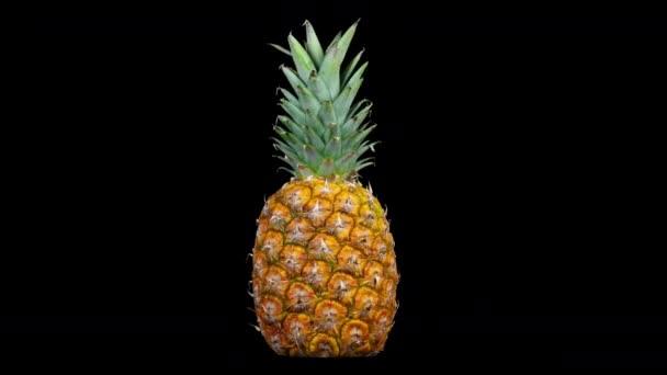 Közelről forgó ananász fekete háttér