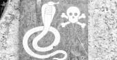 Fotografia in Sud africa il segnale del metallo del pericolo per serpente selvaggio e il cranio e le ossa in un concetto di roccia od paura