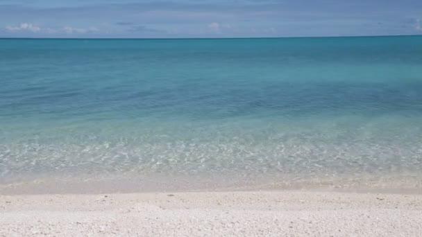 krásný růžový písek a průhledný oceán na pobřeží v rangiroi, Polynésie